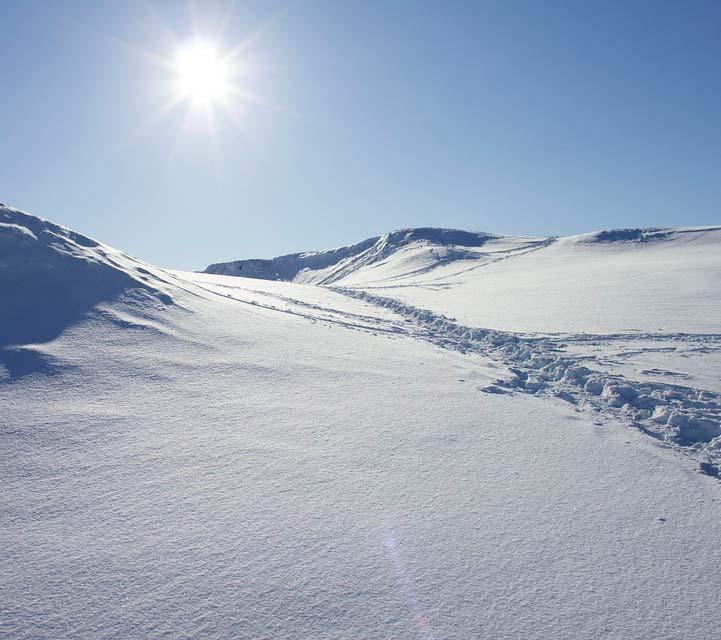 sneeuw ter illustratie van productontwikkeling case study